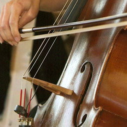 Penn Strings Ensemble, Henryville PA, violin and cello duo, wedding reception string music, eastern PA, wedding music